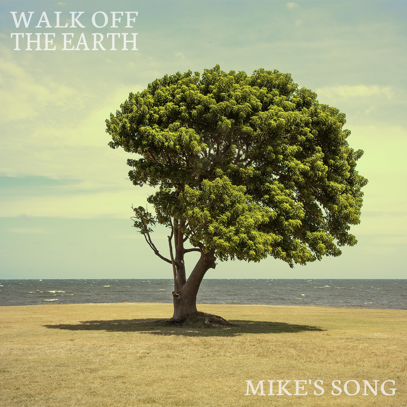 Download: Walk Off the Earth - Mike's Song - Single [iTunes Plus AAC