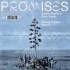 Promises Sonny Fodera Remix Single