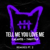 Tell Me You Love Me Remixes Pt 2 Single