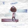 Crazy - Lost Frequencies & Zonderling mp3