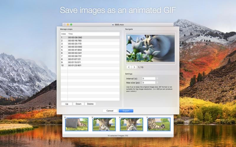 3_SnapMotion.jpg