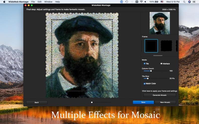 2_WidsMob_Montage-Photo_Mosaic.jpg
