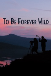 One Wild Night Forever Wild 1 by Magan Vernon