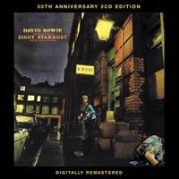 カバーアーティスト|Ziggy Stardust