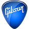I was sitting on the fence with this app to begin with, since it initially was little more than a free advertisement for Gibson guitar company's Learn & Master video instruction series