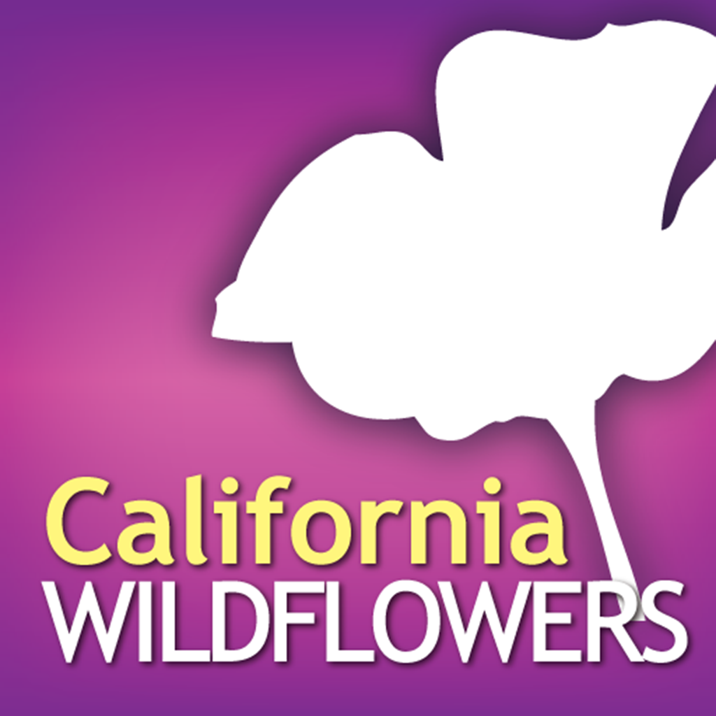 Audubon Wildflowers California – A Field Guide to the Wildflowers of California
