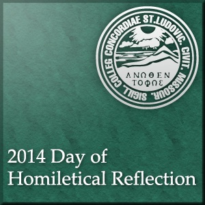 Day of Homiletical Reflection 2014
