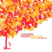 Counting Crows - Accidentally in Love Official