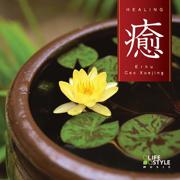 Healing - with Erhu - 曹 雪晶 - 曹 雪晶