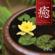 Healing - with Erhu - 曹 雪晶