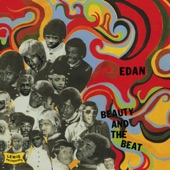 Edan - Funky Voltron