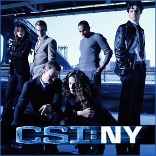 csi new york season 9 online