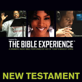 Inspired By … The Bible Experience Audio Bible - Today's New International Version, TNIV: New Testament: New Testament (Unabridged) audiobook