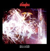 The Stranglers - Was It You?