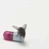Red Hot Chili Peppers - I'm With You artwork
