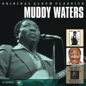 Muddy Waters - Champagne & Reefer