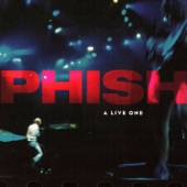 Phish - Simple [Live LP Version - Clifford Ball, 1994]