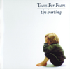 Tears for Fears - Change artwork