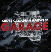 Cross Canadian Ragweed - Dimebag