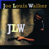 Joe Louis Walker - I Need Your Lovin' Every Day