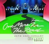 Lynyrd Skynyrd - Searching (Live)