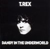 T. Rex - Dandy In the Underworld artwork