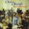 Chris de Burgh, Nick Ingman & London Session Orchestra - Shine On artwork