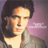 Rick Springfield - Jessie's Girl  artwork