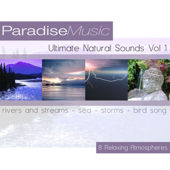 [Download] Gentle Rivers and Streams MP3