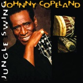 Johnny Copeland - Hold On To What You Got