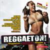 Daddy Yankee, Lil Jon, Noriega & Pitbull - Gasolina (Dj Buddha Remix) grafismos