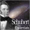 Schubert: Essentials - Elisabeth Leonskaja, Nikolaus Harnoncourt, Royal Concertgebouw Orchestra, Theodor Guschlbauer & Vermeer Quartet