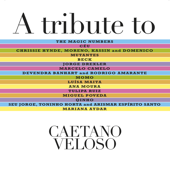 A Tribute to Caetano Veloso (Deluxe Edition)