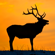 Bull Elk Bugle - Wildtones