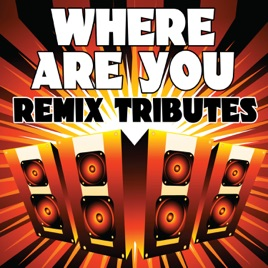 Where Are You (B o B  Vs  Bobby Ray) [Remix Tributes to B o B ] by Re-Mix  Masters