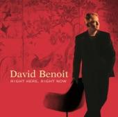 David Benoit - Don't Let Me Be Lonely Tonight