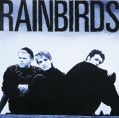 Blueprint / Rainbirds