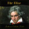 Beethoven Orchestra London - Für Elise MP3