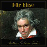Für Elise - Beethoven Orchestra London - Beethoven Orchestra London