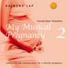 My Musical Pregnancy 2 - Raimond Lap