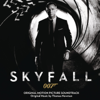 Thomas Newman, Thomas Bowes, George Doering, John Beasley, Paul Clarvis, Frank Ricotti, Sonia Slany, Phil Todd & John Parricelli - Skyfall artwork