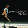 Bruce Springsteen & The E Street Band - Fire (Live) kunstwerk