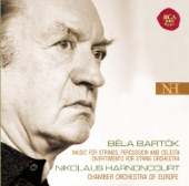 Divertimento for String Orchestra, Sz. 113: II. Molto Adagio artwork