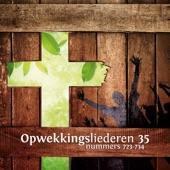 Tienduizend Redenen (733) artwork