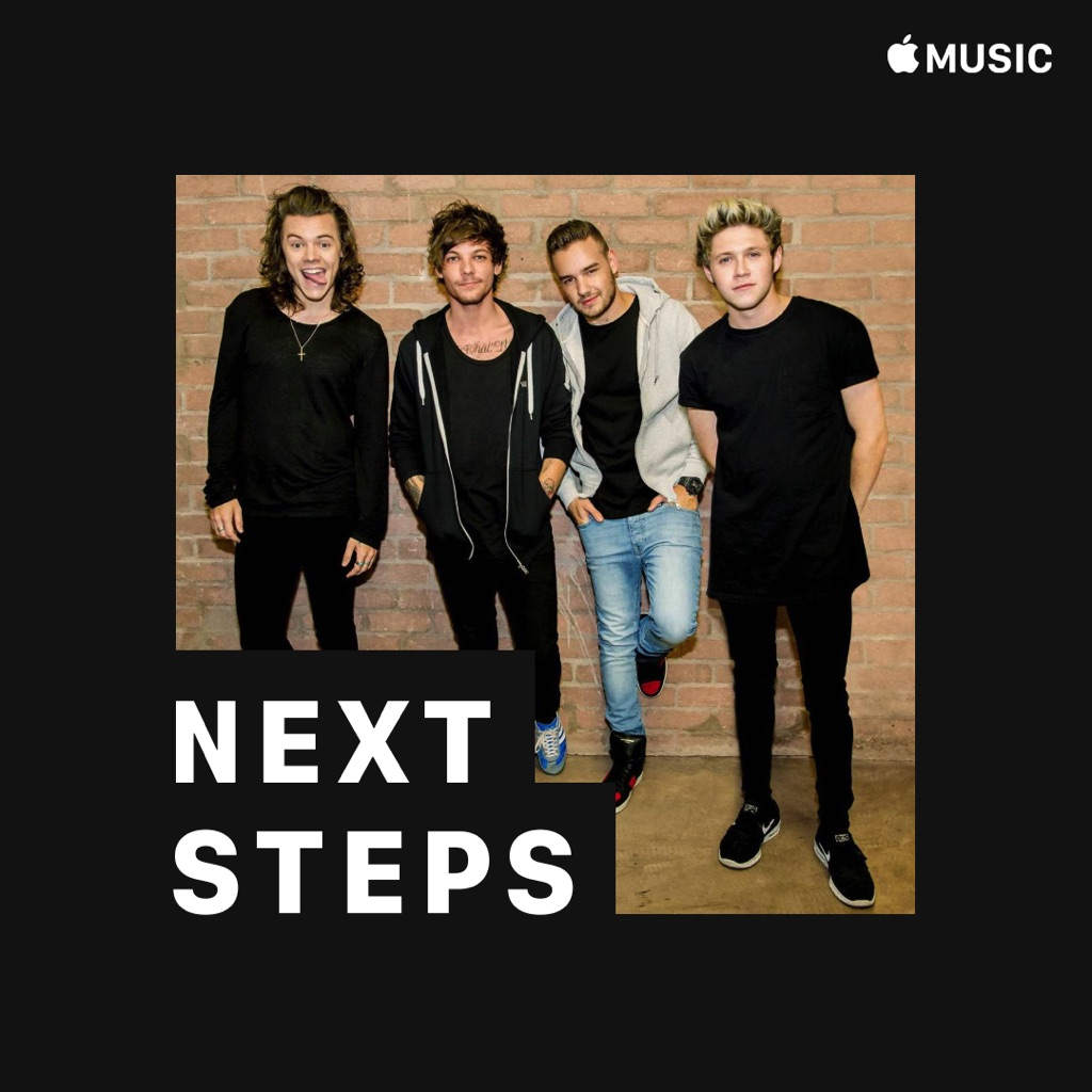 One Direction: Next Steps