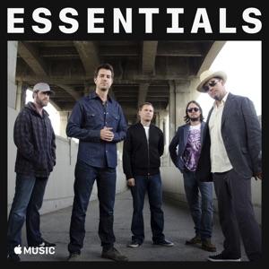 311 Essentials