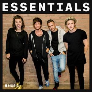 One Direction Essentials