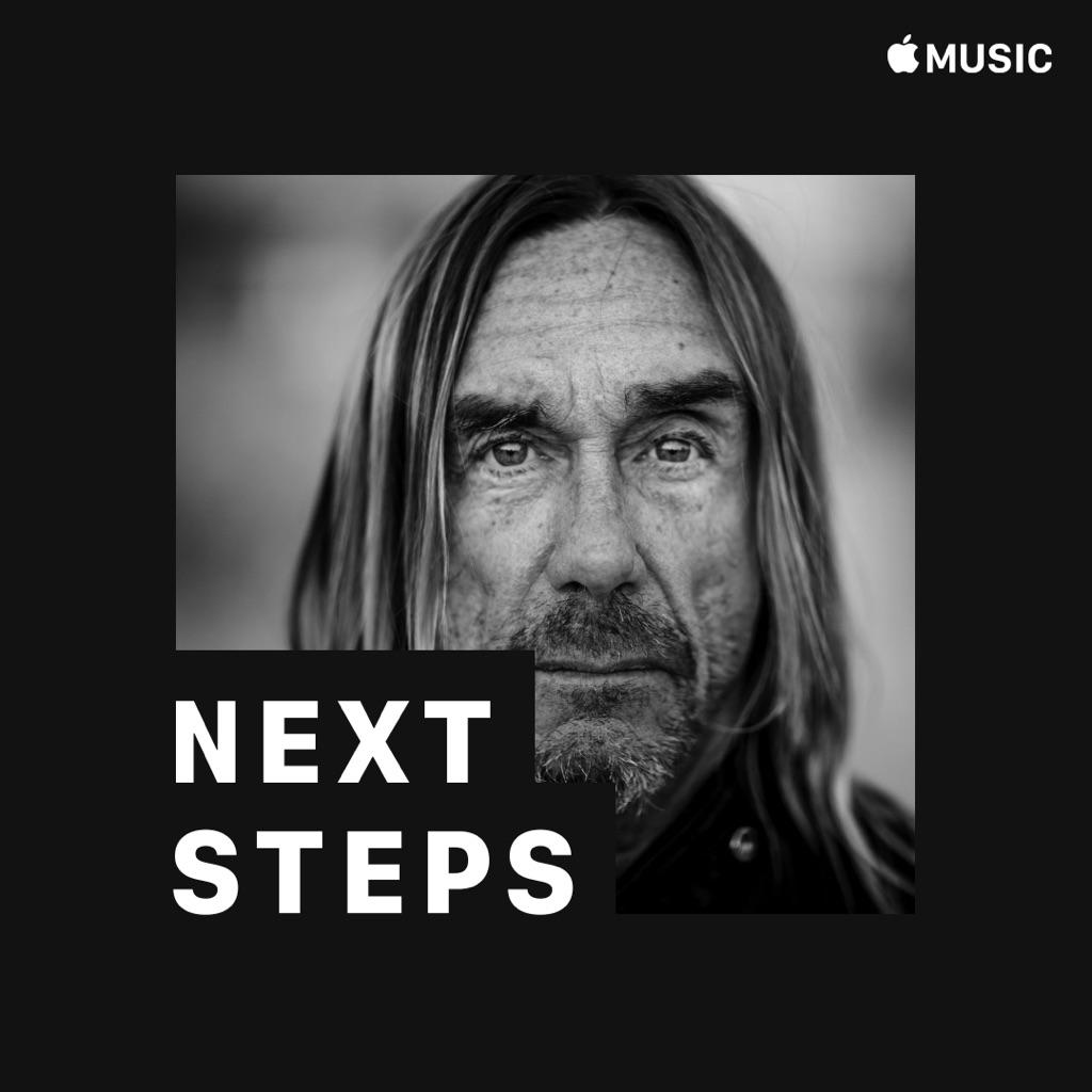 Iggy Pop: Next Steps