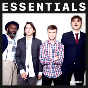 The Libertines Essentials