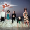 Nude On the Moon - The B-52's Anthology